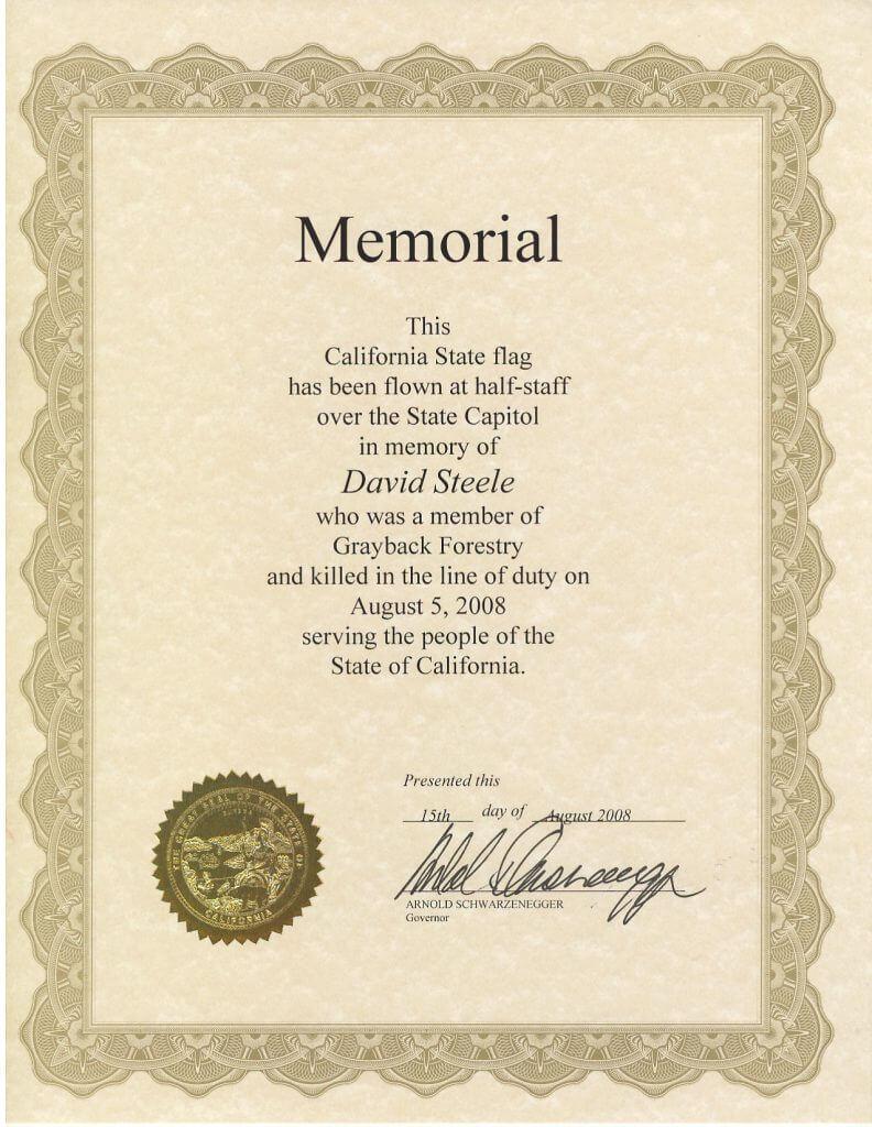 Flag_Cert_Cali_Schwarzenegger